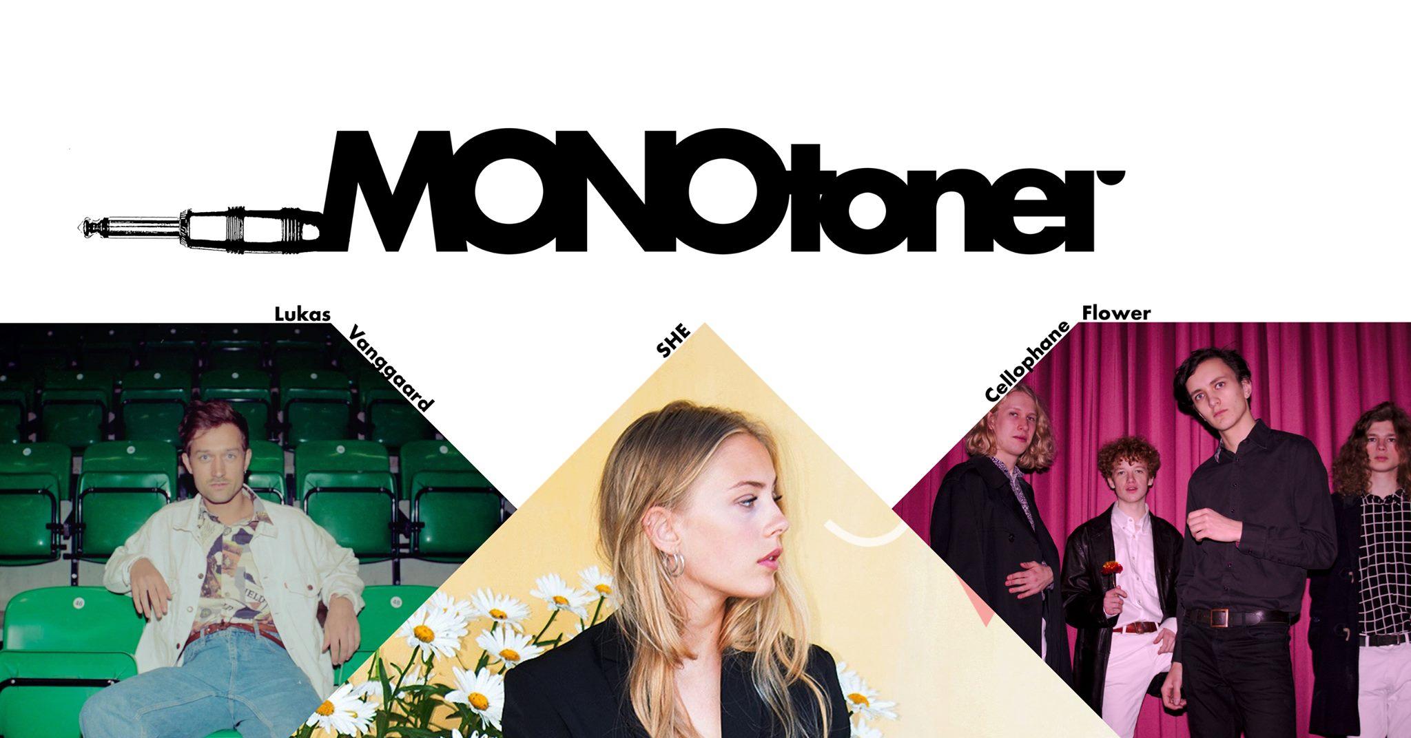 Monotoner2020